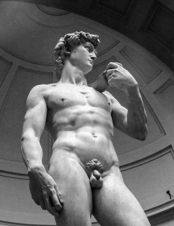 David Florence Michelangelo